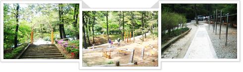 체육공원 사진